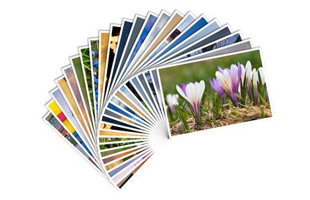 Stampe e copie b/n e colore Plottaggi, stampe e rilegatura di progetti in file cad o simili e relazioni tecniche.